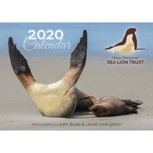 The All New 2020 Sea Lion Calendar